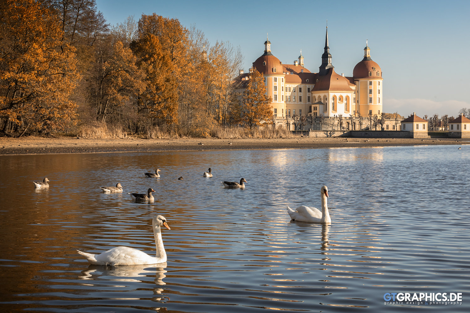 Postcard from Moritzburg